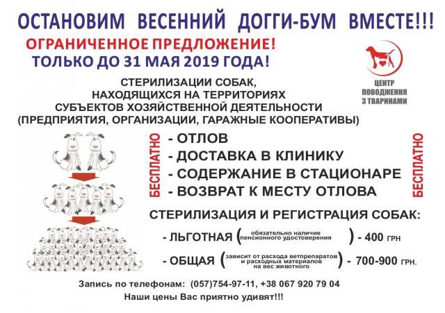 КП «Центр обращения с животными» объявляет акцию «Остановим весенний догги-бум вместе!»