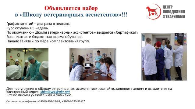 Приглашаем в Школу ветеринарных ассистентов