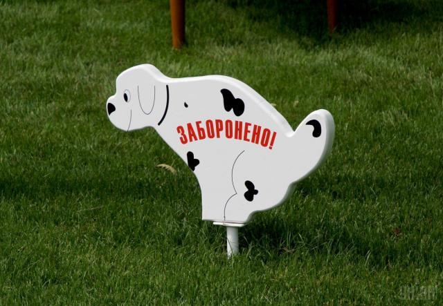 В Виннице штрафуют за выгул собак в запрещенных местах, а в Кривом Роге установили первые собачьи туалеты