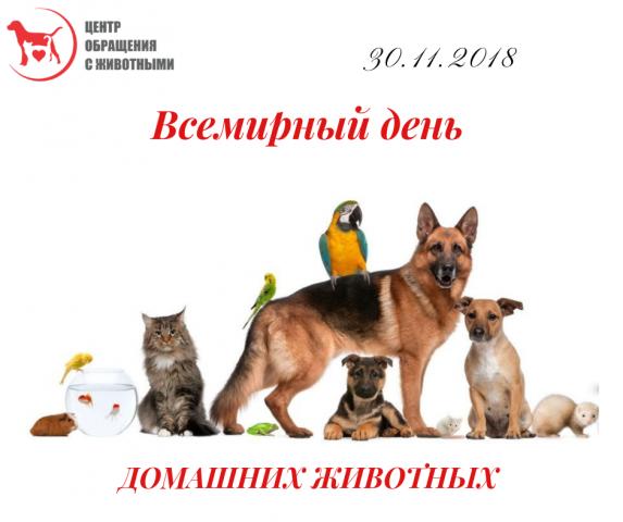 30 ноября празднуется Всемирный день домашних животных