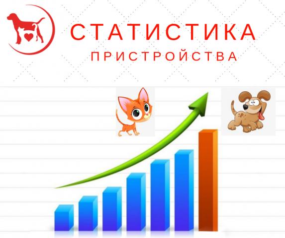 """Статистика КП """"Центр обращения с животными"""" количества пристроенных за летние месяцы животных"""