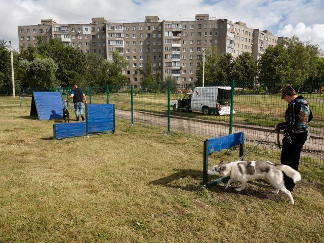 У Слобідському районі відкрили майданчик для вигулу собак