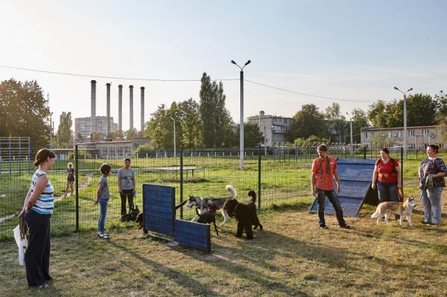 """Инвентаризация знаков """"Место для выгула собак"""" и площадок КП """"центр обращения с животными"""" на 13.11.2017г."""
