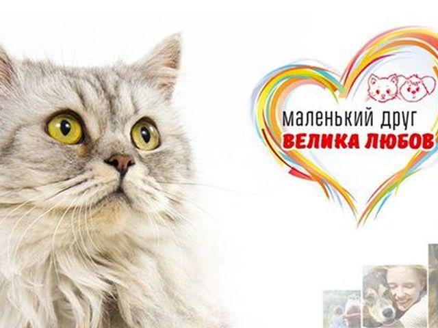 """КП «Центр обращения с животными» и сеть зоомаркетов """"MASTERZOO"""""""