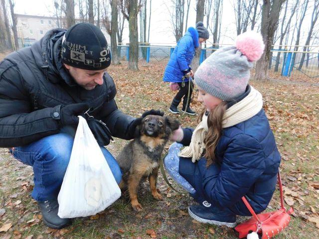 """10 декабря традиционный воскресный выгул собак и посещение """"Кошкиного дома"""" в Центре обращения с животными"""