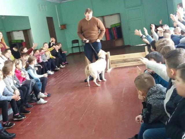 """""""Уроки доброты"""" от Центра обращения с животными встречали ребята школы № 48"""