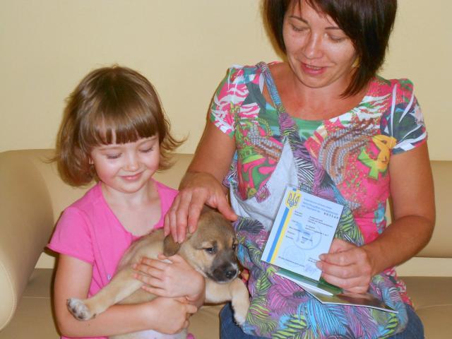 Как взять животное из Харьковского приюта