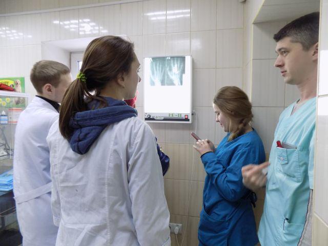 Основы рентгенологии осваивали студенты-практиканты зооветакадемии в ветклинике Центра обращения с животными