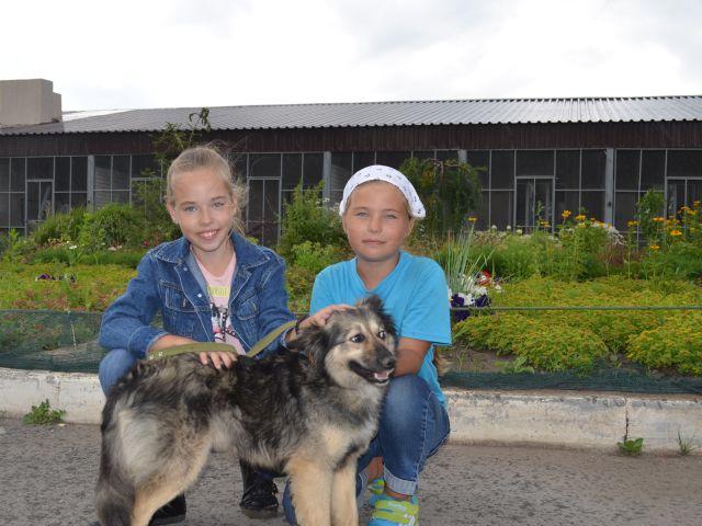 1 июля в Центре содержания бездомных животных состоялся очередной «День открытых дверей»
