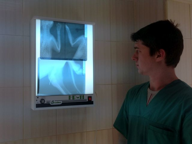 Спасибо Благотворительному Фонду «Центр социальных проектов будущего» за пленку для рентгенаппарата!