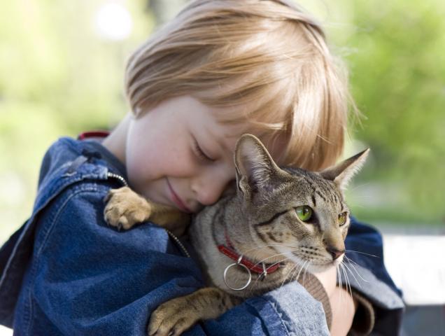 6 советов родителям, чьи дети просят завести питомца