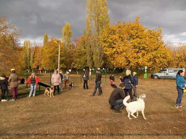 Узнай где: в Харькове открыли еще одну площадку для выгула собак