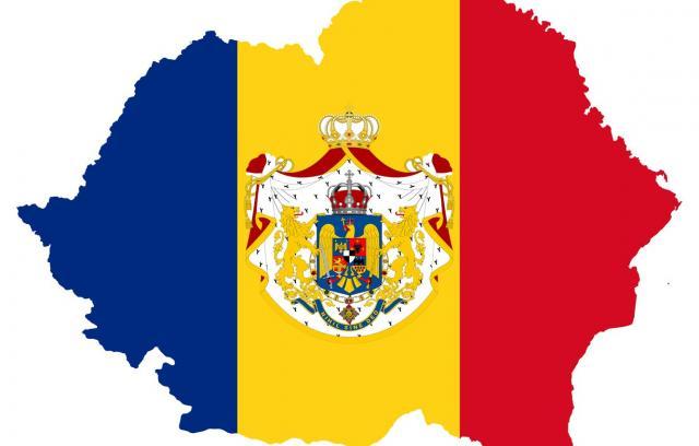Методы регулирования численности бездомных животных в Румынии