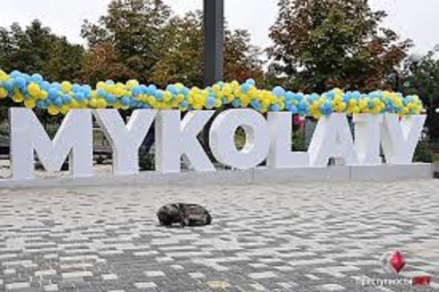 Дороги, мусор и бездомные животные: Жители Николаева назвали главные проблемы города