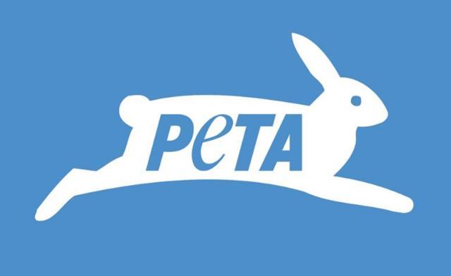 Мнение американской зоозащитной организации PETA об эвтаназии невостребованных бездомных животных