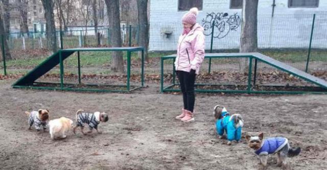 В Шевченковском районе открыли площадку для выгула собак