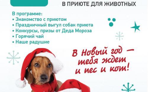 Центр обращение с животными приглашает всех на традиционные РОЖДЕСТВЕНСКИЕ ВСТРЕЧИ