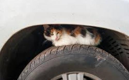 Уважаемые автомобилисты, будьте внимательны!