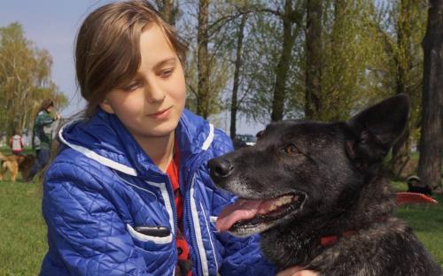 """КП """"Центр обращения с животными"""" посетило рекордное количество харьковчан"""