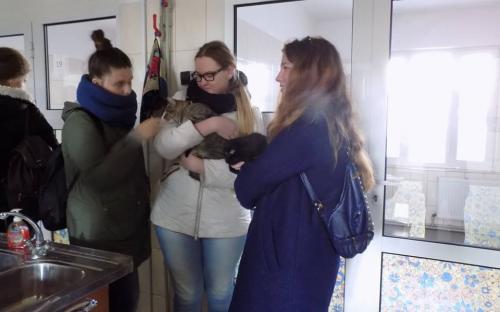 Выездное практическое занятие будущих ветеринаров