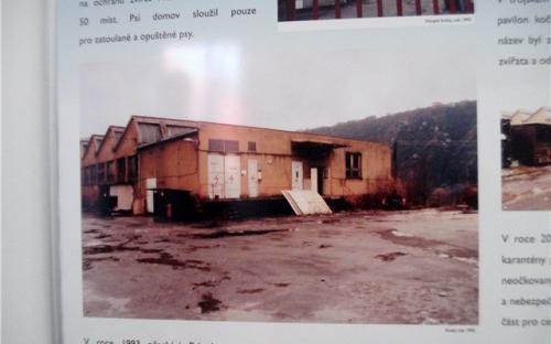 Как раньше выглядела территория приюта