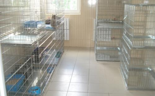 Круглосуточная ветеринарная клиника на Гагарина в Харькове