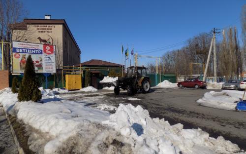 В Центре обращения с животными убирают снег и ждут весну.
