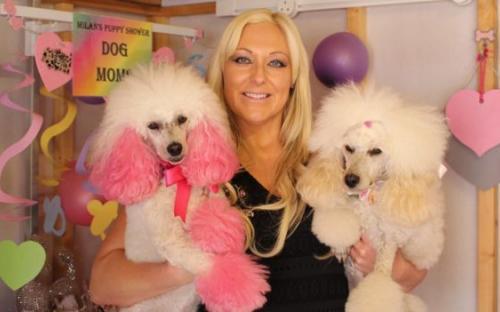 Даниэла Форшоу подчеркивает, что красить собак должен профессионал