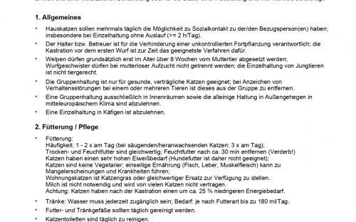 Рекомендации по содержанию домашних кошек в Германии
