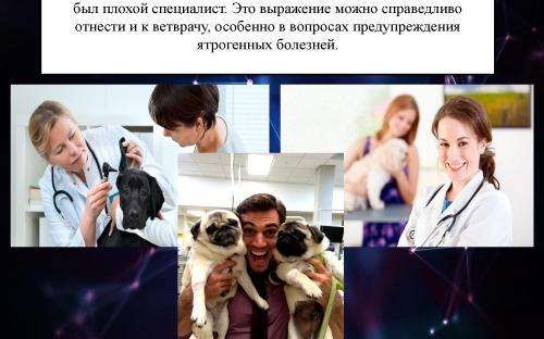 Ятрогения в ветеринарной медицине