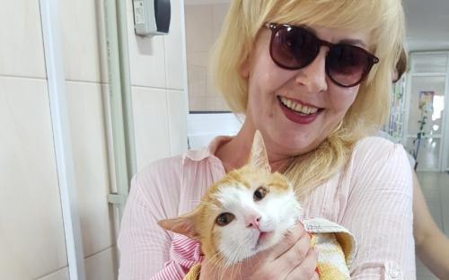 """КП """"Центр обращения с животными"""" проводит """"банные дни"""" для приютских котиков"""