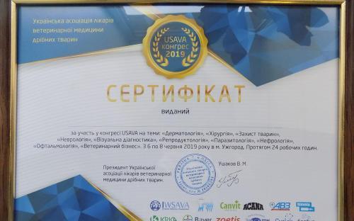 КП «Центр обращения с животными» стало официальным членом Украинской ассоциации врачей ветеринарной медицины мелких животных (USAVA)