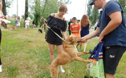 Каждое воскресенье Приют для содержания бездомных животных ждет всех желающих!