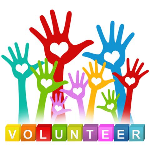 КП «Центр обращения с животными» объявляет второй набор в Школу волонтеров