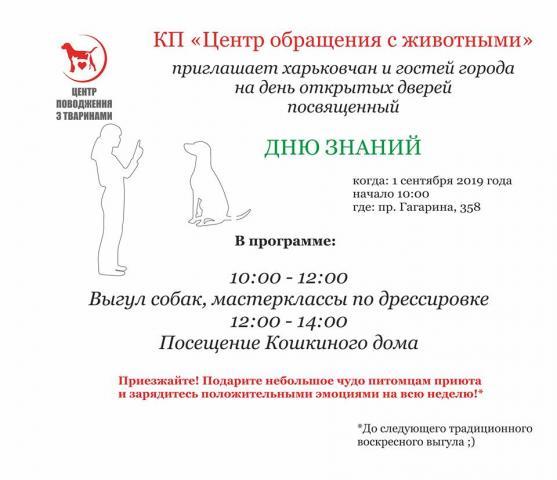 """В КП """"Центр обращения с животными"""" состоится выгул, посвященный Дню знаний"""