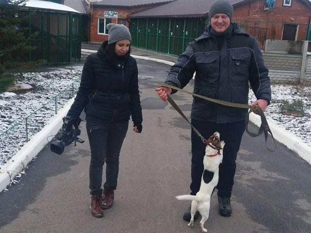 """Центр обращения с животными запускает новый проект: """"Советы кинолога"""""""