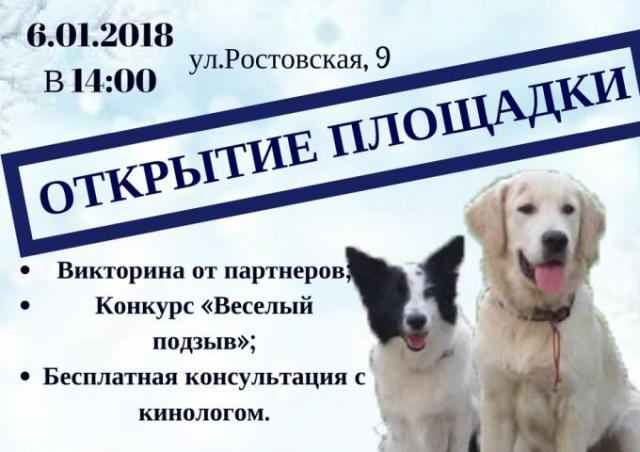 Центр обращения с животными анонсирует открытие еще одной площадки для выгула собак