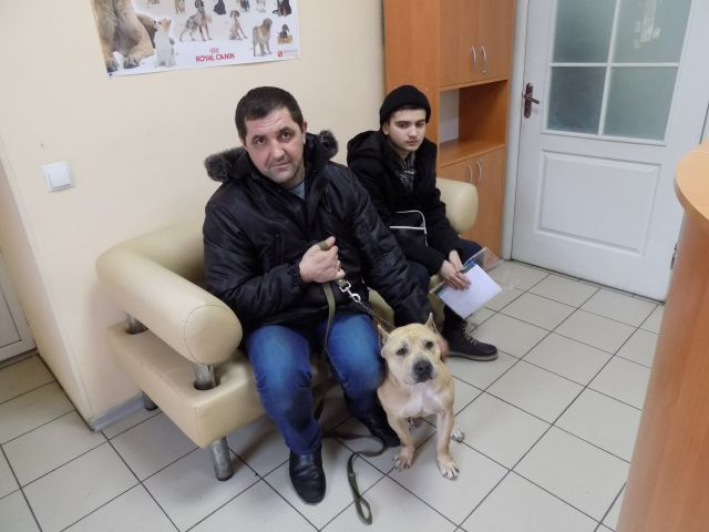 Джессика из приюта КП Центр обращения с животными нашла владельцев