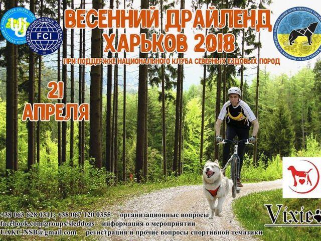 Харьковский Весенний Драйленд 2018