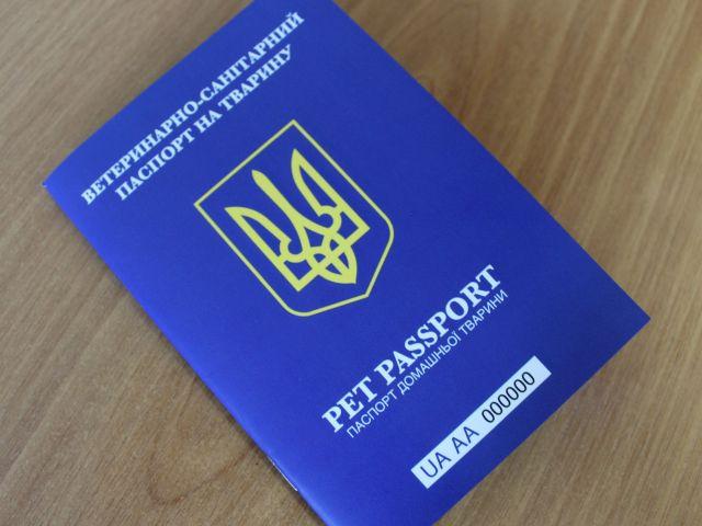 Украина изменила правила для ввоза и вывоза из страны кошек и собак