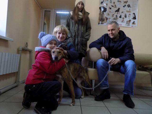 КП «Центр обращения с животными» за два месяца в добрые руки было пристроено 139 животных.