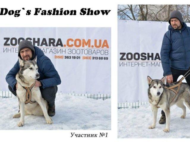 Костюмированный праздник для собак Dog`s Fashion Show
