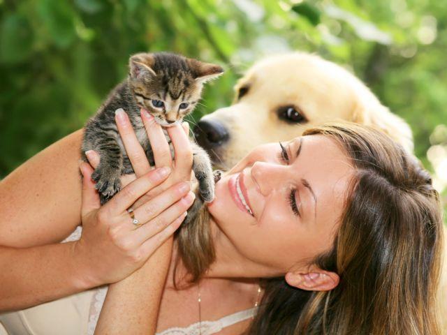 КП «Центр обращения с животными» объявляет акцию «Хозяин, жду тебя!»