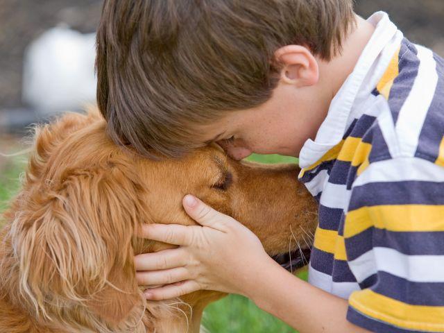 2 июля КП «Центр обращения с животными» празднует Международный день собаки