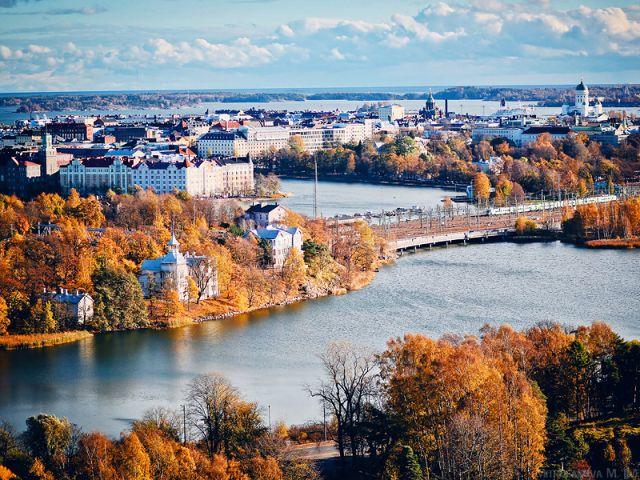 """Закон """"О защите животных"""" в Финляндии"""