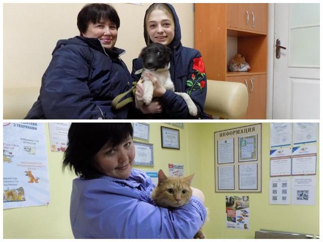 пристроенные животные из Центр обращения с животными Харьков