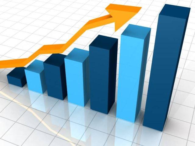 В Харькове количество покусов снизилось на 77%