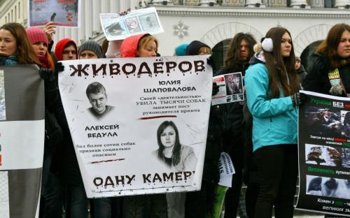митинг, прошедший в Киеве под зданием Деснянского суда