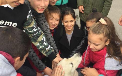 """Ребята из 77 школы побывали на экскурсии в """"Центре обращения с животными"""""""