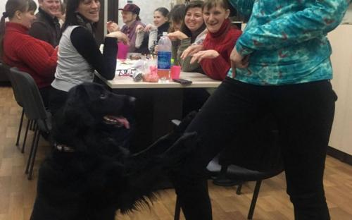 """П. Полященко, кинолог Центра обращения с животными провел занятия канистерапии с участниками проекта """"Шаг к независимой жизни"""""""